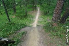 19 pista downhill