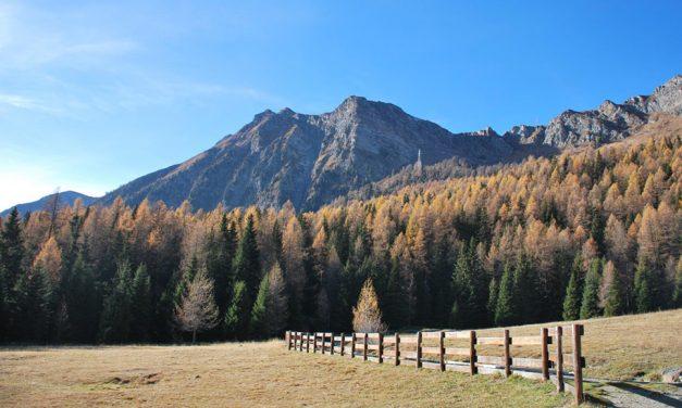 Monte Zerbion 2010